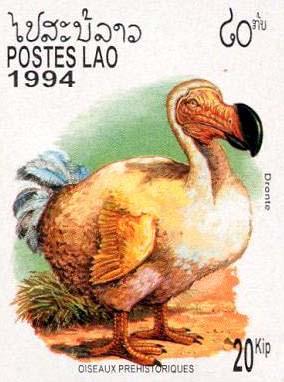 timbre avec dodo